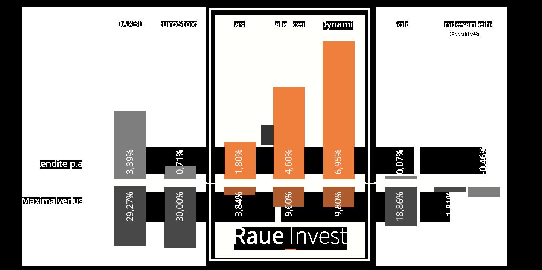 Vergleich Alternativanlage vs. Raue Invest